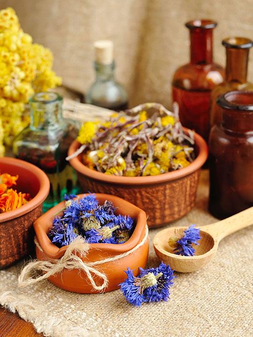 Bitkisel ve Destek Ürünleri